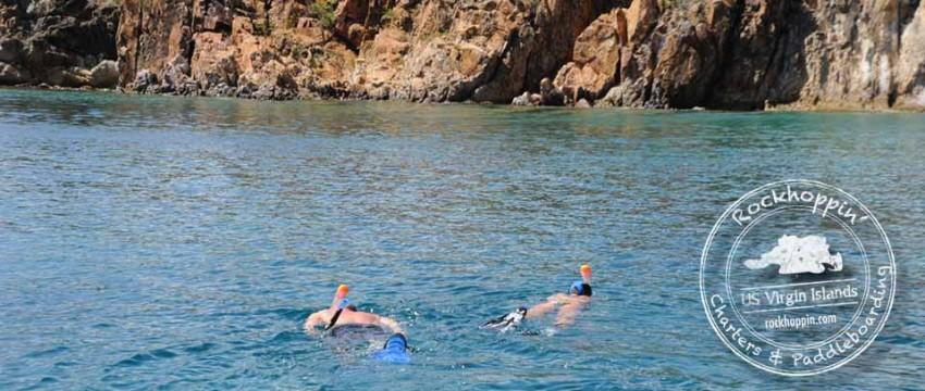 snorkeling-bvi-the-aquarium