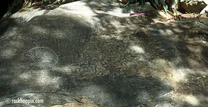 reef-bay-hike-petroglyphs-stjohn-usvi